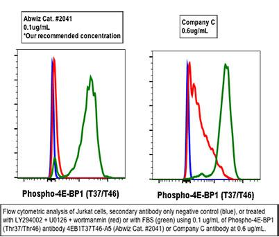 Phospho Antibodies