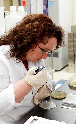 Phage Display Antibody Library Researcher